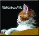 WALDOBORO*PL